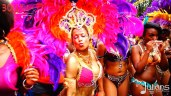 2014 West Indian Day Carnival Shots (Julianspromos) (23)