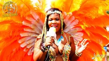 2015 Boston Carnival Vivaa (09)