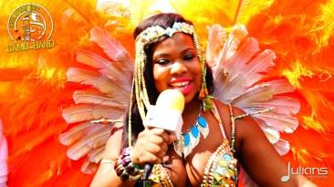 2015 Boston Carnival Vivaa (10)