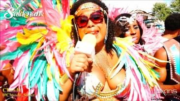 2015 Toronto Carnival (Caribana) (06)