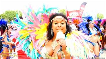 2015 Toronto Carnival (Caribana) (07)