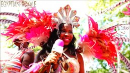 2015 West Indian Day Carnival (Julianspromos) (06)