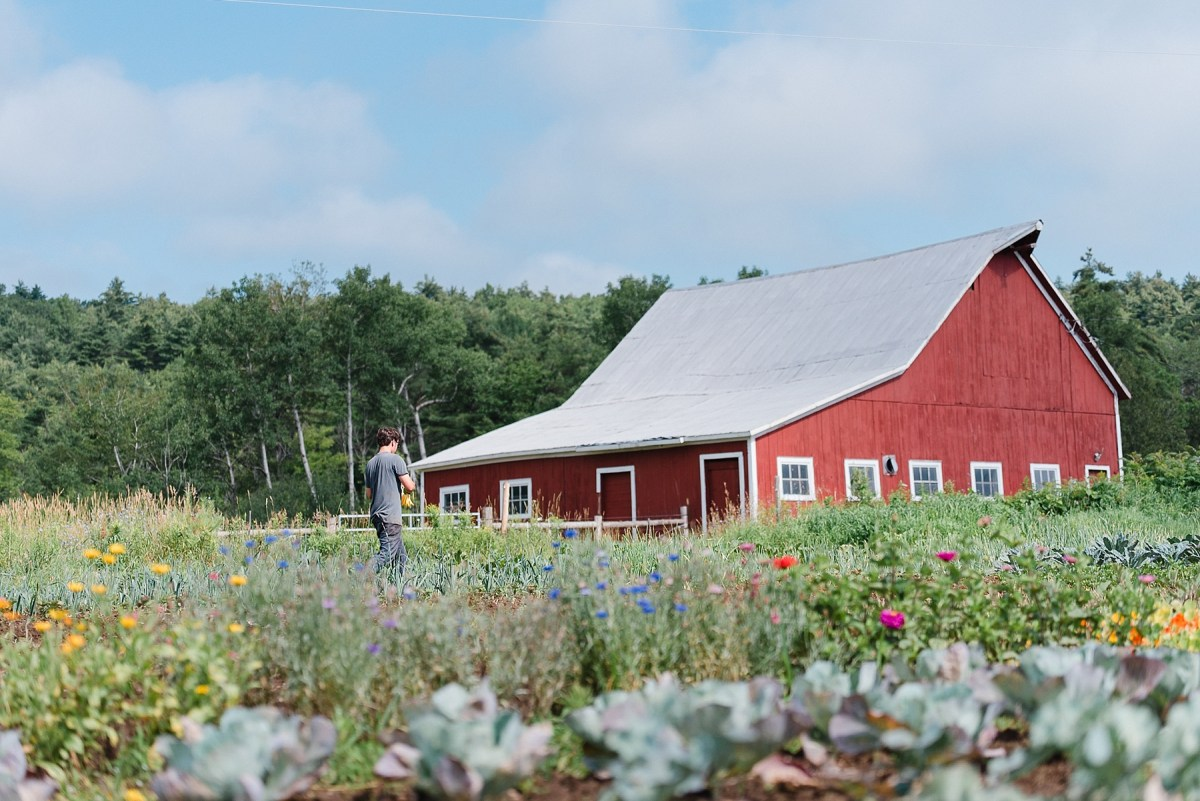 Farm to Table for Your Wedding - Farmstead Catering