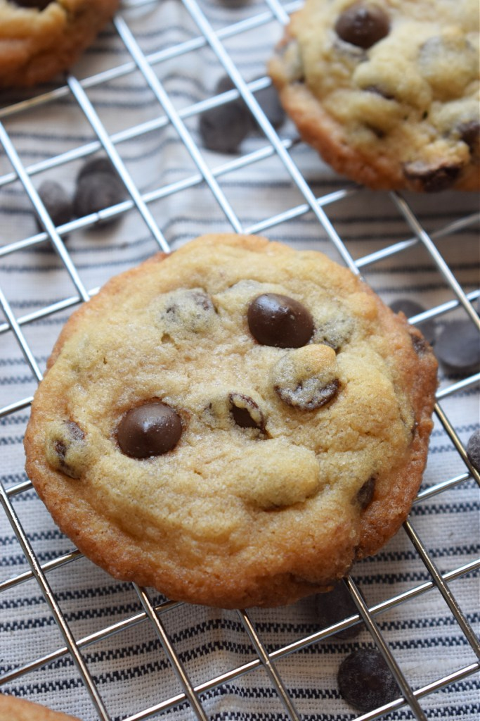 a freshly baked chocolate chip cookie