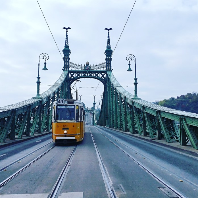 tram and public transport