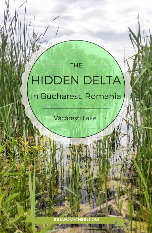 HIDDEN DELTA in Bucharest VACARESTI Lake