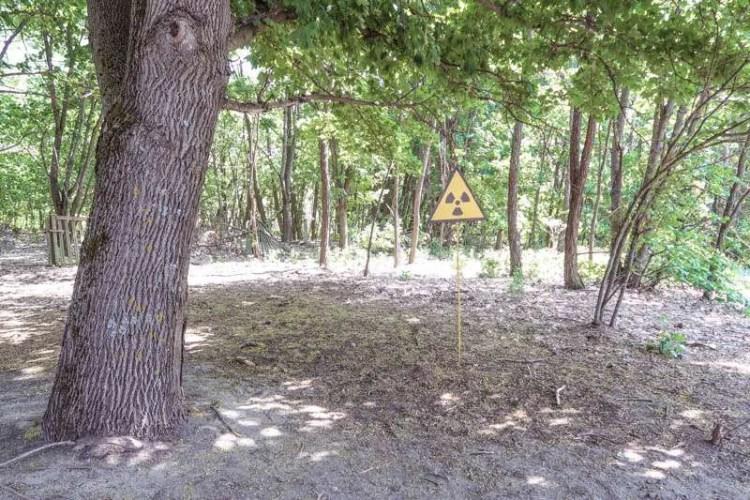 visit Chernobyl city