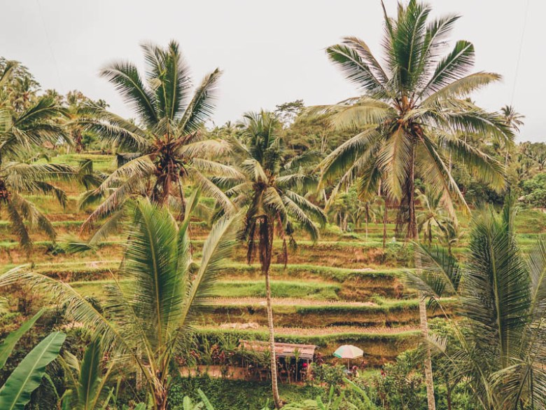 5-day itinerary in Bali for first-timers bali 5 day itinerary