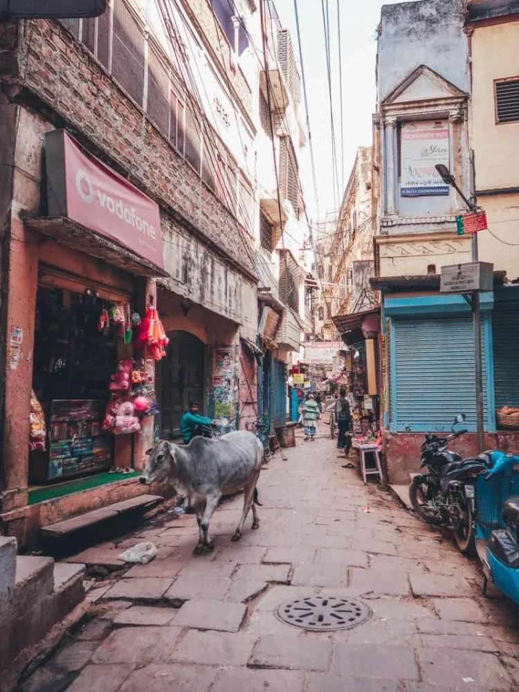 2 Days in Varanasi, the holy city of India. streets of varanasi