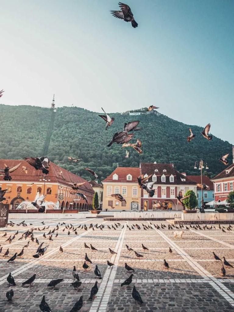 Piata Sfatului Top 11 things to do in Brasov, Romania