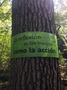 """""""La reflexion es tan important como la acción"""" Reflecion is as important as action."""""""
