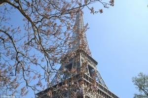 Tour-Eiffel-Trocadéro-Paris-5