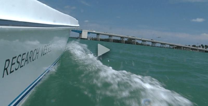 ORCA Protecting Indian River Lagoon