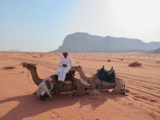 bedouins and camels
