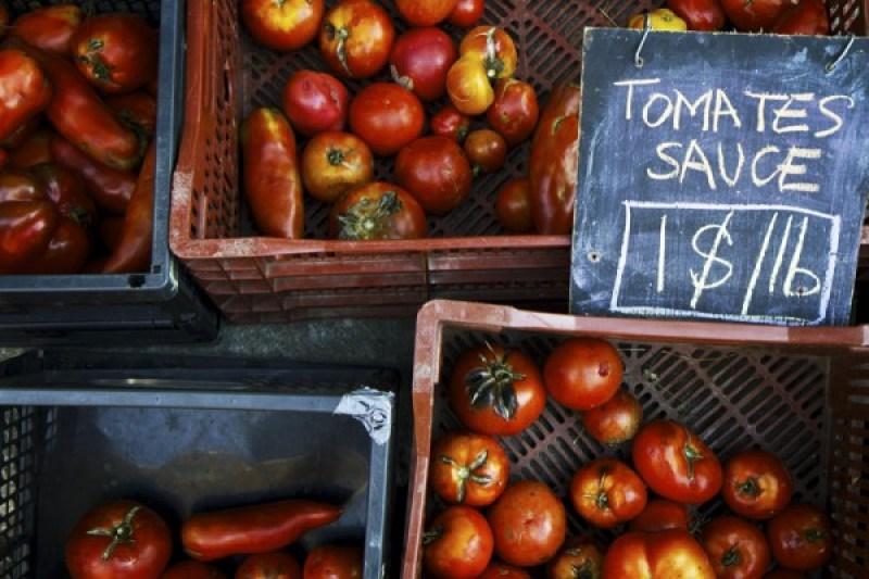 Tomates sauce