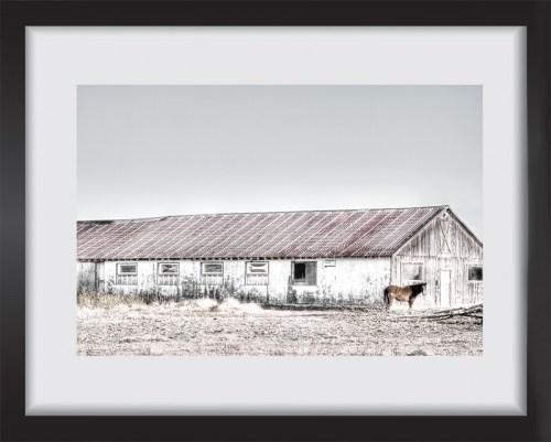 Le cheval, la grange et l'arbre mort. Oeuvre papier. Encadrement non inclus.