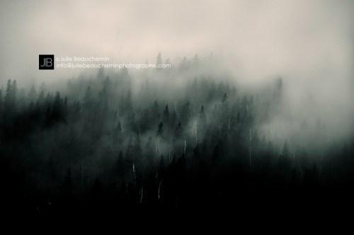 Matapedia © Julie Beauchemin