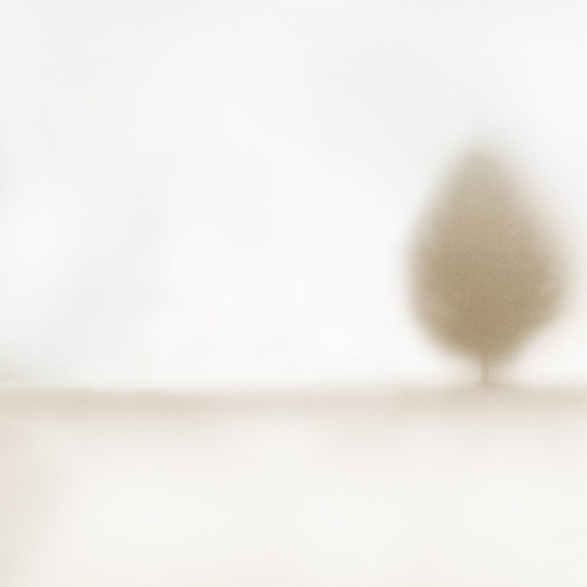 Le troisième ami #2 ©Julie_Beauchemin