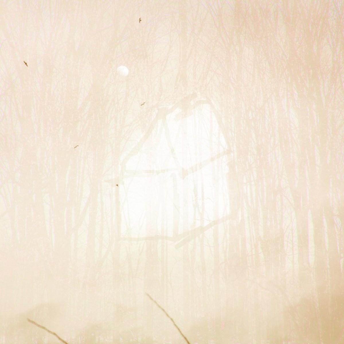 Une vie en camouflage -beige doré © Julie Beauchemin