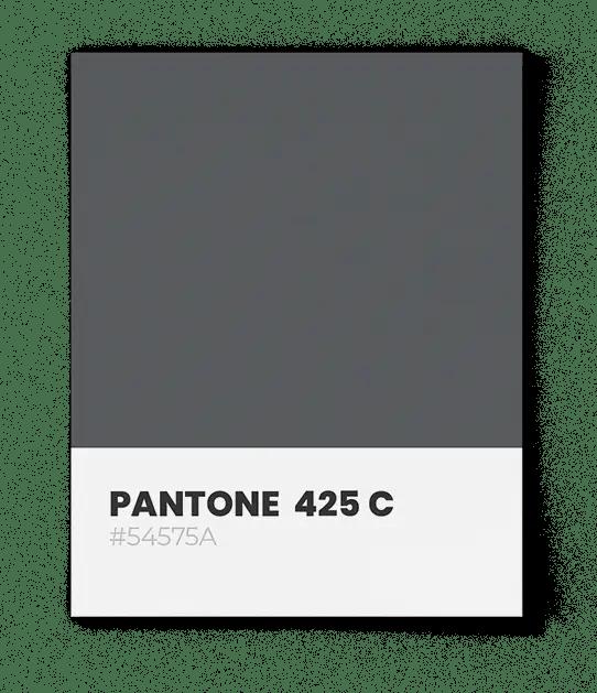 PantonePantone-425C