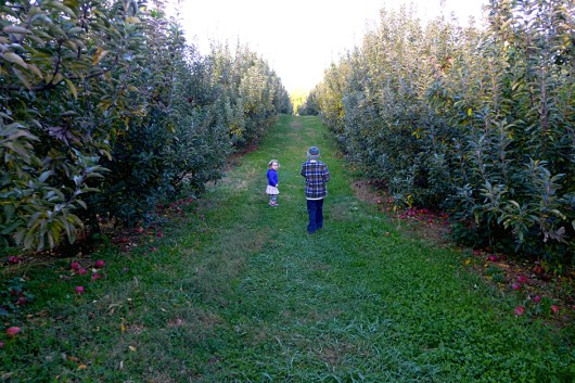 10.25.13 | we finally made it to the apple orchard