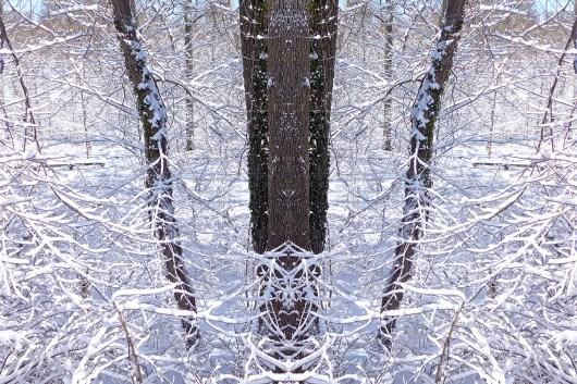 03.09.15 | snowllusion