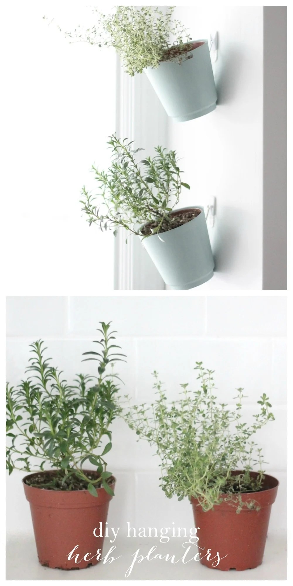 Indoor Herb Garden | Hanging Planter Tutorial on Hanging Plant Pots Indoor  id=46381