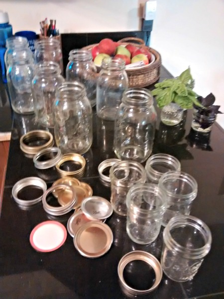 mulberry syrup jars