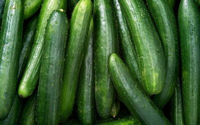Did I ever tell you my Cucumber Story?
