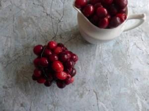 Cranberries 4(640x480)