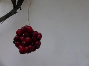 Cranberries 5(640x480)