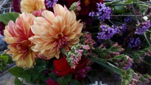 arranging flowers in autumn