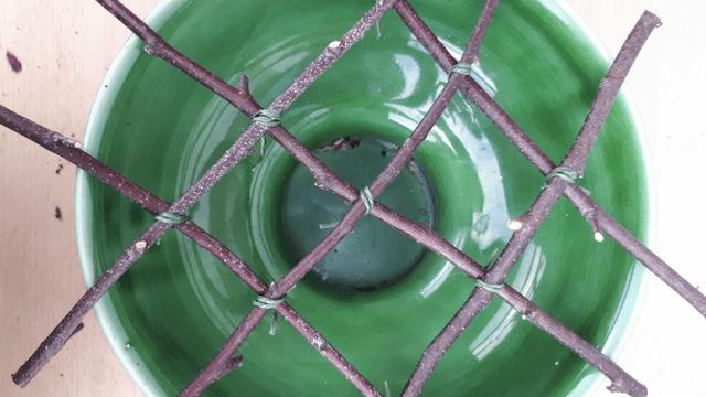 Using Silver Birch – 2 ideas from Sarah Raven's garden