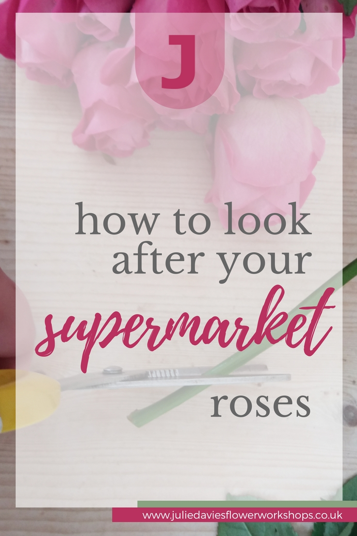 how to look after supermarket roses