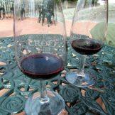 Glasses of port wine