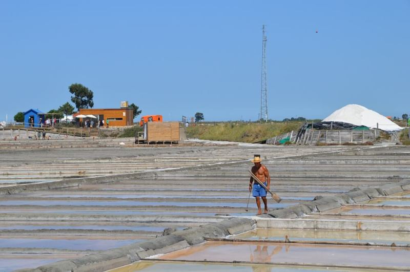 Marnoto at work in the salt pans, Aveiro