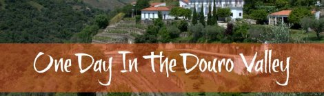 Luxury one day tour of the Douro Valley as a day trip from Porto