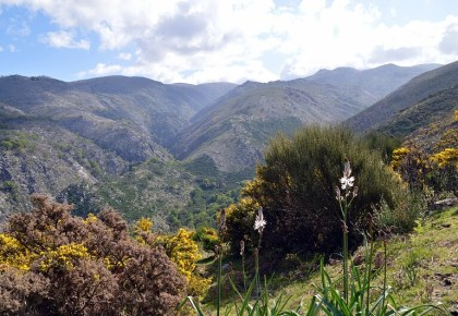 Ramiscal protected area, Peneda-Gerês National Park