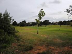 Overlooking course