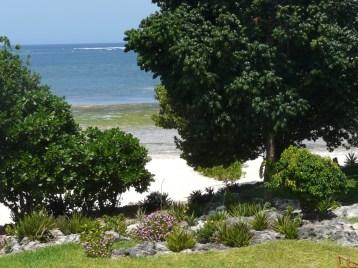 garden to beach