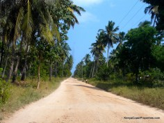 road to plot