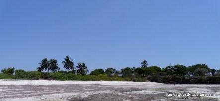 beach, plot
