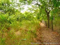 Kilifi Creek plot border