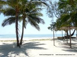 beachfront-area