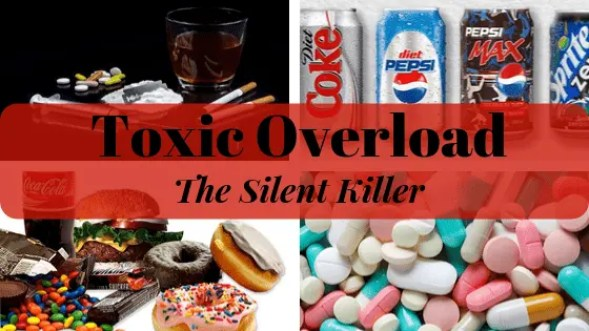 Toxic Overload - The Silent Killer