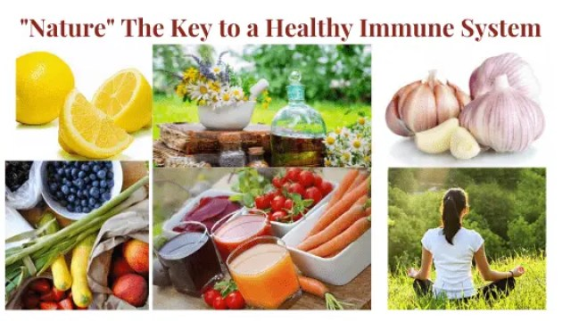 Nature the Key to a Healthy Immune System