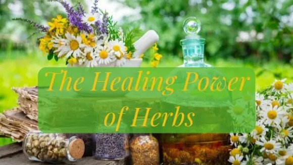 The healing power of herbs direct from Nature to you