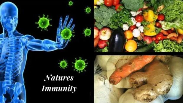 Coronavirus: 9 Steps Prevention & Recovery!