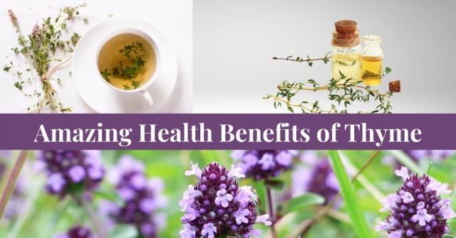 Boost your Immunity, Lower Blood Pressure just two of the Amazing Health Benefits of Thyme