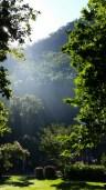 Mangrove Mountain Ashram retreat